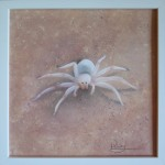 White Lady / 30 x 30 cm / Fr.  350.00